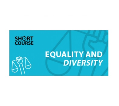 E Learning Equality and Diversity